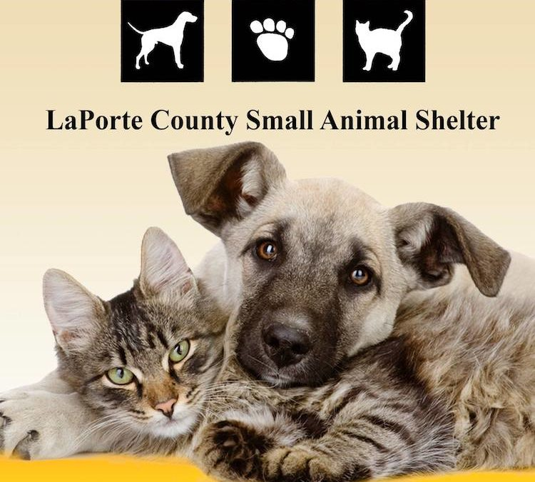 LaPorte County Small Animal Shelter
