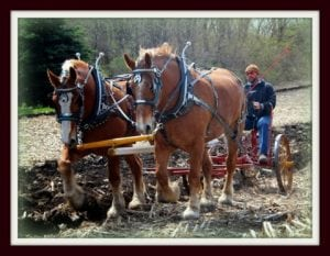 Spring Plow Day with the LaPorte County Draft Horse Association @ Round Barn Adjacent to the LaPorte County Historical Society | La Porte | Indiana | United States